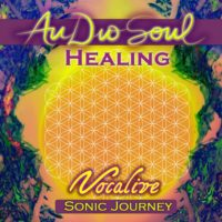AudioSoul Healing - Vocalive